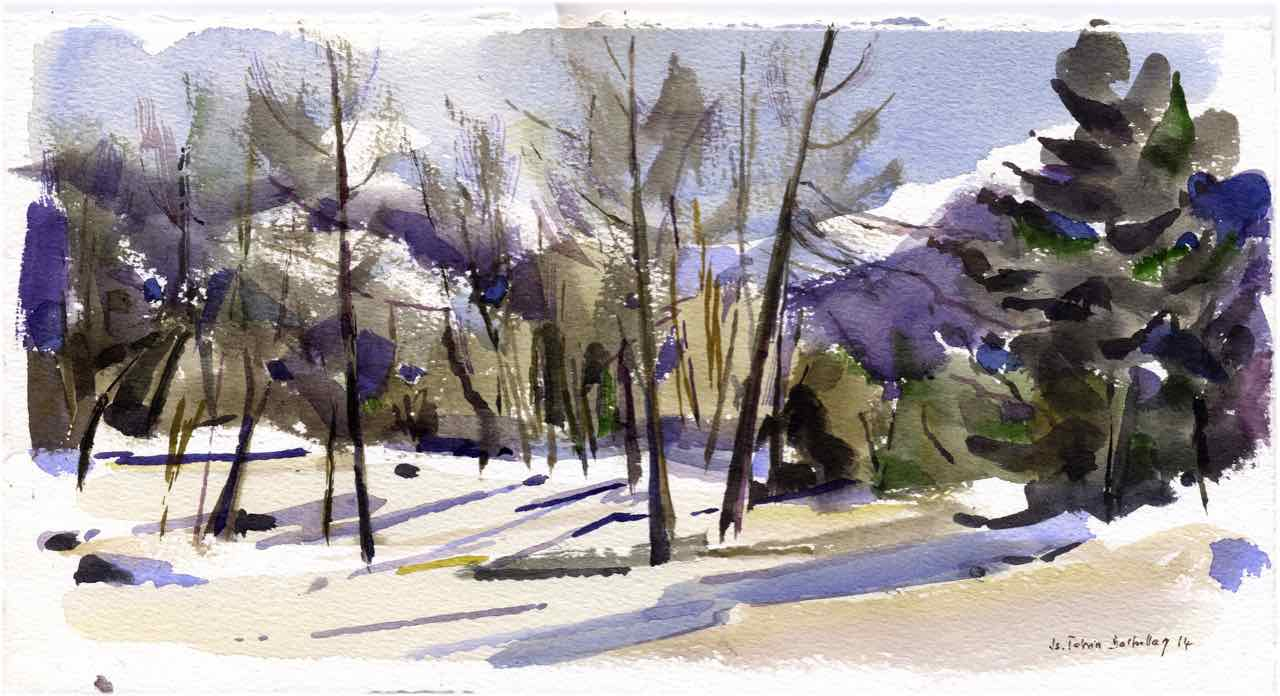 Neige à la Zour - 2014